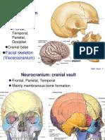Bone_Skull.pdf
