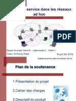 Presentation S1