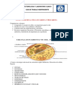 BACTERIOLOGIA Y LABORATORIO CLINICO.docx