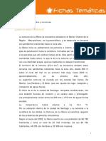 Ficha 16 Actividad.pdf