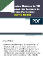 Clase Lesión de nervio radialk