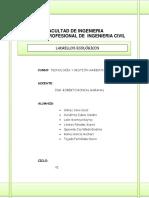 LADRILLOS ECOLÓGICOS.docx