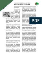 MATERIAL ECOMUCHIK SABATINO 2013.docx