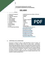 SILABO FINAL MUJER Y NEONATO.docx