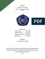 124691_REFERAT RM DMD.docx