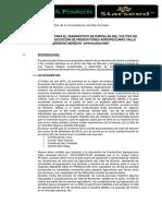 Propuesta-de-Plan-de-Trabajo-para-Valle-de-Monzón-2017.docx
