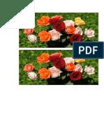 mawar 107