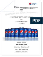 """A minor project report on """"VERUN BEVERAGES"""""""