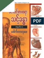 Dr. Hla Phay -- sait-win-sar-sa-yar-thint-body