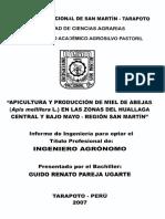APICULTURA TARAPOTO.pdf