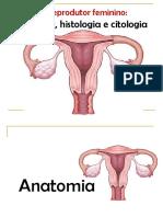 Aula 02 Anatomia_histologia_citologia Do Tgf