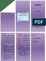 LEAFLET_ANEMIA_PADA_REMAJA.doc