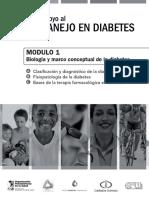 Automanejo en Diabetes.pdf