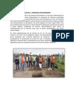 DESCRIPCION DE CALICATA.docx