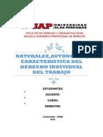 DERECHO INDIVIDUAL..docx