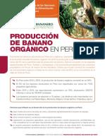 Produccion de Banao