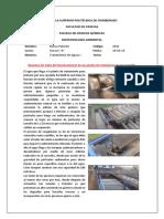 Pataron_Nancy_D6.docx