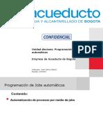 SAP FICA/PSCD - Unid 16 Programación de Jobs