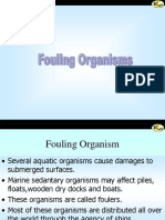 Fouling Organisms.pps
