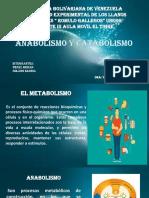 METABOLICOS PRESENTACION