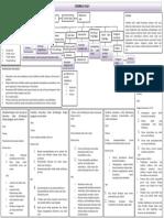 pathway cerebral.docx