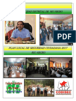 PLAN LOCSL SEG CIUDADANA-2017 RN FINAL.pdf
