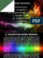 MIKRO MINERAL 2.pptx