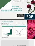 Produccion de acido lactico a partir de tallos de rosas