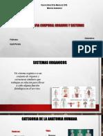 Diapositivas Anatomia I (Unidad II)