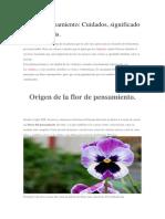 Flor de Pensamiento.docx