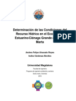 DETERMINACION DE LAS CONDICIONES DEL RECURSO HIDRICO.docx