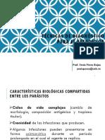 DIAGNÓSTICO_DE_ENFERMEDADES_TROPICALES_YGPR.pdf