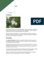 Proyecto Historia.docx