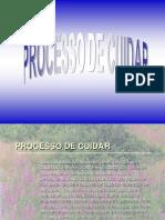 PROCESSO DE CUIDAR.ppt