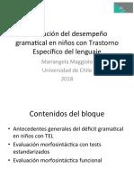 Evaluación gramatical TEL