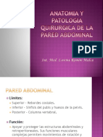 Anatomia y Patologia Quirurgica de La Pared Abdominal-lore