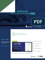 Manual Visanet