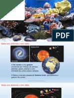 1 - Da célula � biodiversidade.pdf