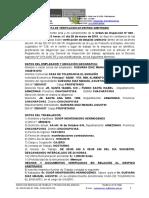 Verificacion de Despido - Guevara Diaz Manuel Agustin