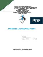UNIDAD IV TAMAÑO DE LAS ORGANIZACIONES.docx