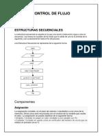 CONTROL DE FLUJO.docx