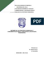 informe Edgardo AEF.docx