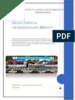 DELINCUENCIA ORGANIZADA EN MEXICO.docx