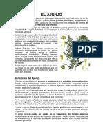 EL AJENJO.docx