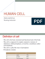 Human cell (2).pptx