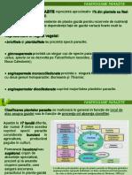 Fanerogame parazite și plante carnivore