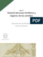 clase 7 SNP.pdf