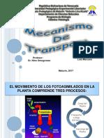 Mecanismo de Transporte2017.ppt