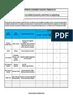 Formato Medidas de Prevencion y Control