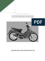 Manual de Servico ZIG 100.pdf